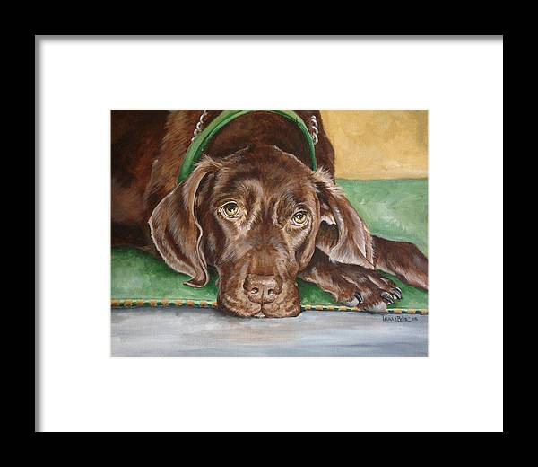Brown Dog Framed Print featuring the painting Big Brown Dog by Laura Bolle
