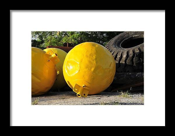 Yellow Framed Print featuring the photograph Big Yellow Balls by David Lee Thompson