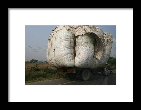 India -travel Framed Print featuring the photograph Bigger Is Better by Andrei Fried