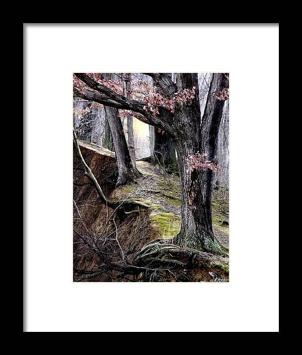 Nature Framed Print featuring the digital art Bilbow's Path by Bill Stephens