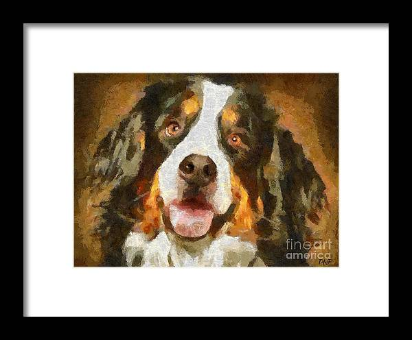 Portraits Framed Print featuring the painting Bimbo - Bernese Mountain Dog by Dragica Micki Fortuna