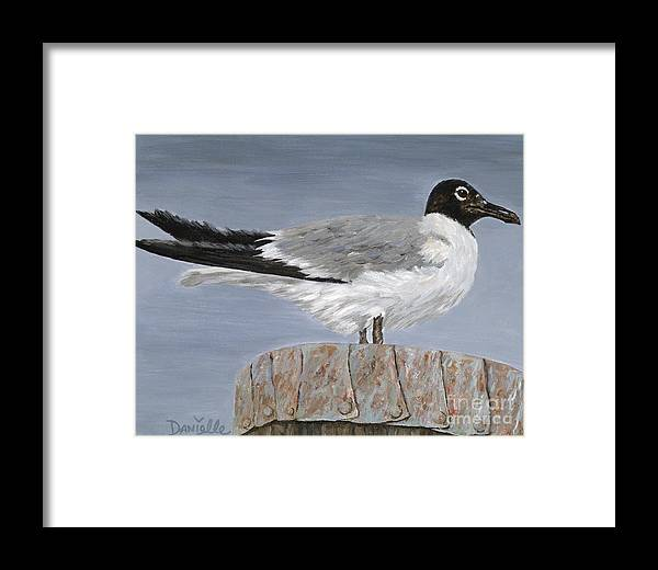 Seagull Framed Print featuring the painting Bimini Gull by Danielle Perry