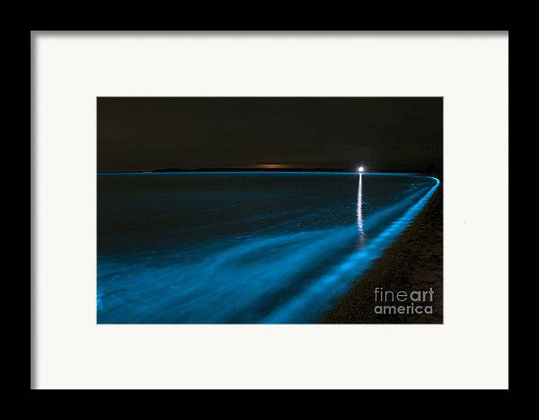Bioluminescence Framed Print featuring the photograph Bioluminescence In Waves by Philip Hart