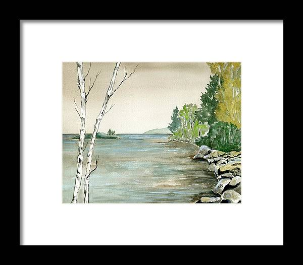 Landscape Watercolor Birches Trees Lake Pond Water Sky Rocks Framed Print featuring the painting Birches By The Lake by Brenda Owen