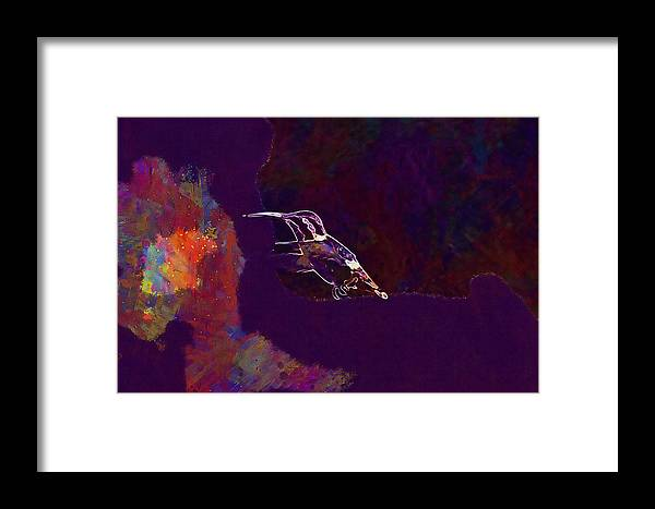 Bird Framed Print featuring the digital art Bird Animal Small Wildlife Flying by PixBreak Art