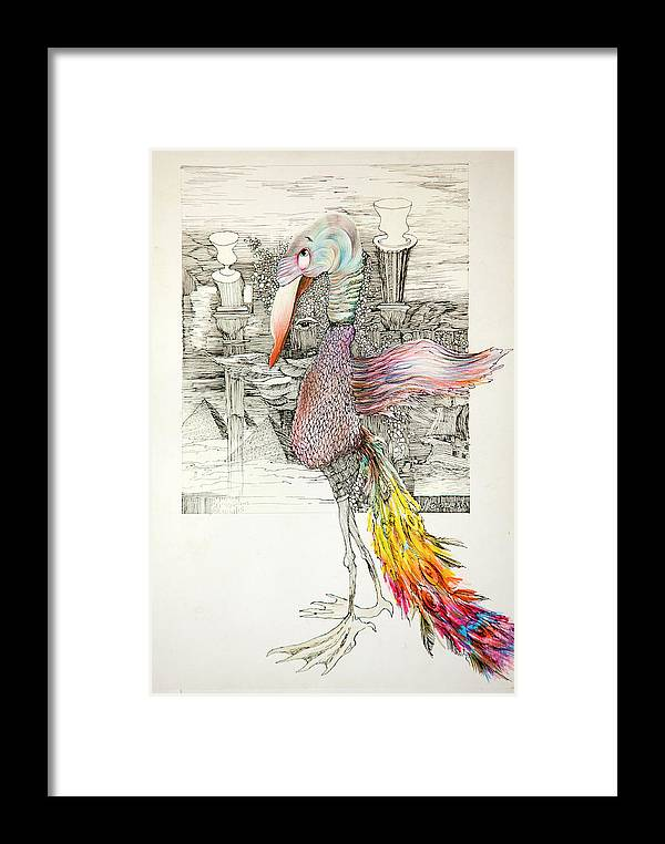 Ink Framed Print featuring the drawing Bird by Misha Lapitskiy