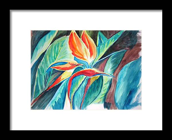 Bird Of Paradise Framed Print featuring the painting Bird Of Paradise by Gladiola Sotomayor