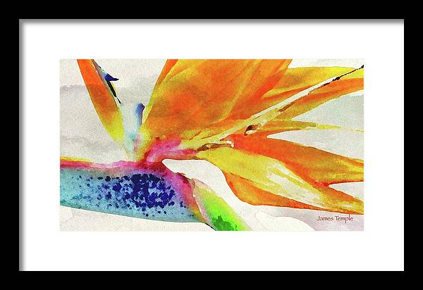 James Temple Watercolor Framed Print featuring the digital art Autumn In Hawaii by James Temple