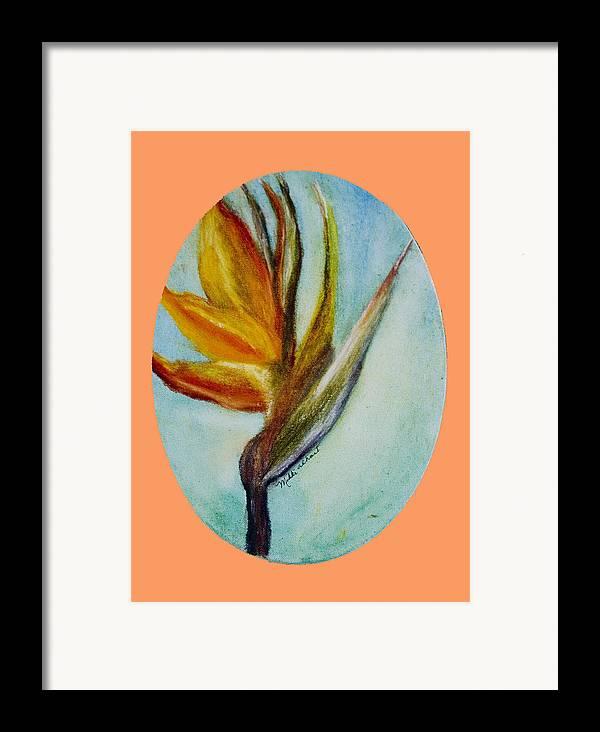 Bird Of Paridise Framed Print featuring the painting Bird Of Paridise by Mikki Alhart