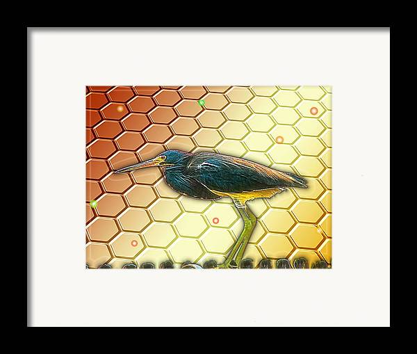 Bird Framed Print featuring the digital art Bird Ponders The Disappearing Bees And Several Biological Markers Left In The Hive by Wendy J St Christopher