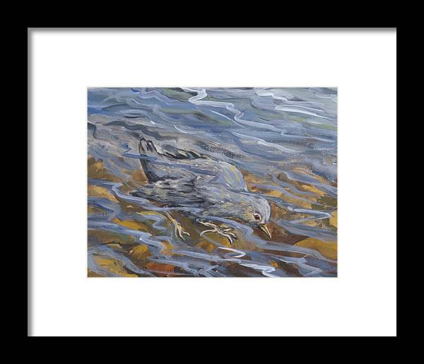 Animal Framed Print featuring the painting Bird Underwater by Dawn Senior-Trask