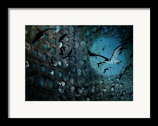Digital Photography Framed Print featuring the photograph Birds And Building by Tony Wood