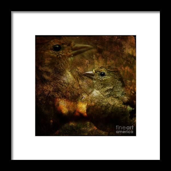 Sparrow Framed Print featuring the photograph Birds by Angel Ciesniarska
