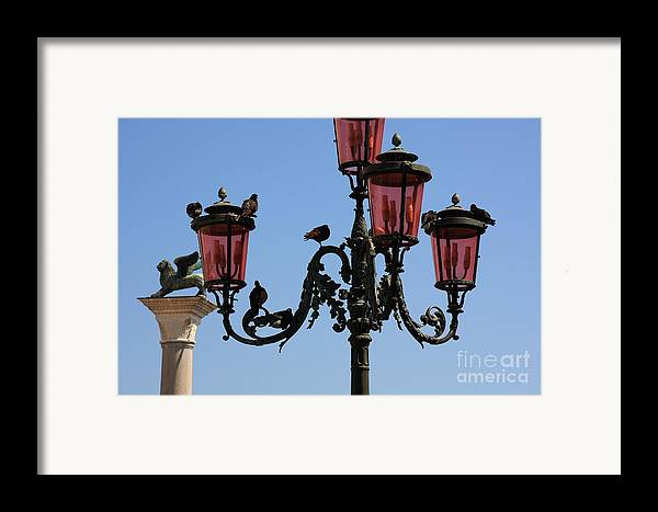 Venice Framed Print featuring the photograph Birds On A Lamp Post In Venice by Michael Henderson