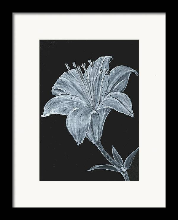 Lily Framed Print featuring the painting Black And White Asiatic Lily by Richard Bulman