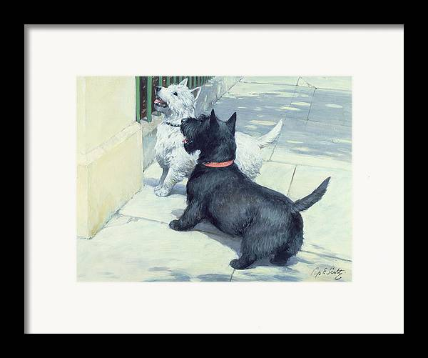 Dog Framed Print featuring the painting Black And White Dogs by Septimus Edwin Scott