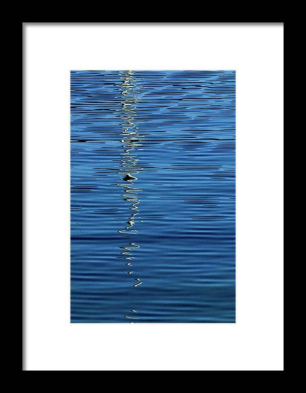 Black Framed Print featuring the photograph Black And White On Blue by Tom Vaughan