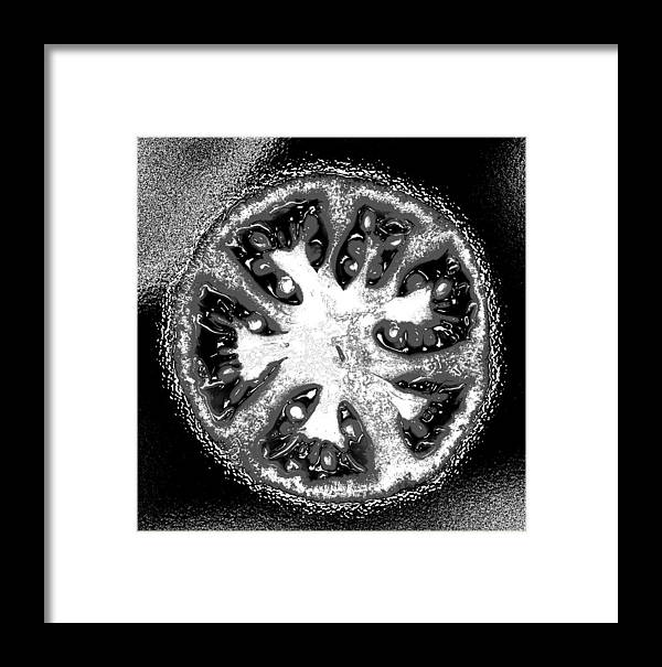 Tomato Framed Print featuring the photograph Black And White Tomato by Nancy Mueller