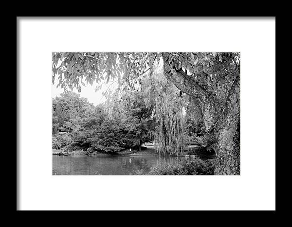 Lake Framed Print featuring the photograph Black And White Tranquility by Rodger Mansfield