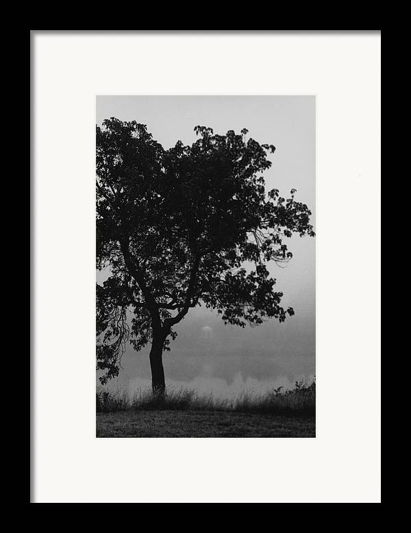 Black Framed Print featuring the painting Black Elm by Arnold Isbister