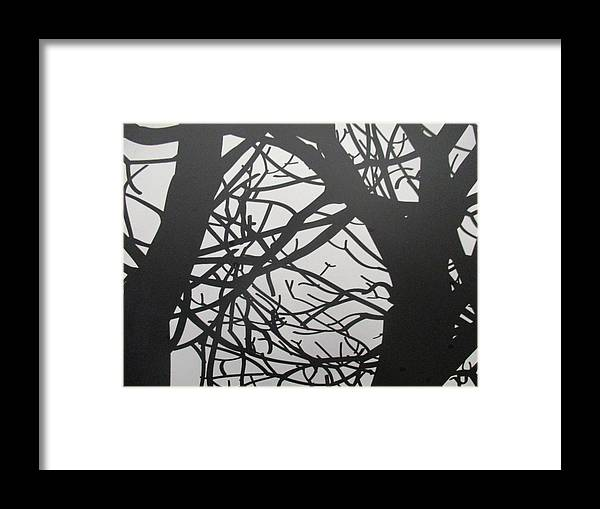 Black Forest Framed Print featuring the photograph Black Forest by Anthony Schafer