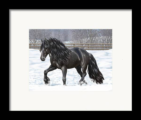 Horses Framed Print featuring the painting Black Friesian Horse In Snow by Crista Forest