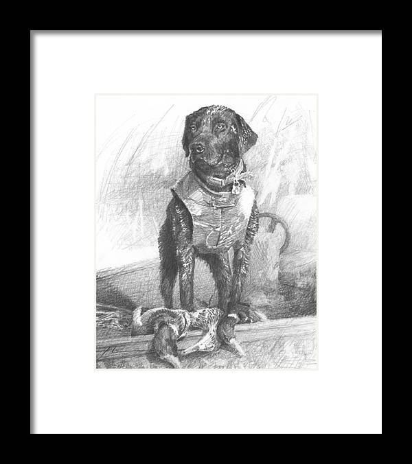 <a Href=http://miketheuer.com Target =_blank>www.miketheuer.com</a> Black Labrador Duck Hunting Pencil Portrait Framed Print featuring the drawing Black Labrador Duck Hunting Pencil Portrait by Mike Theuer