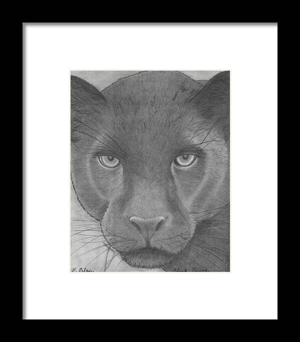 Wildlife Framed Print featuring the drawing black Panther by Eileen Blair