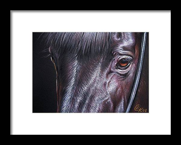 Horse Animal Portrait Equine Drawing Framed Print featuring the drawing Black Stallion by Elena Kolotusha