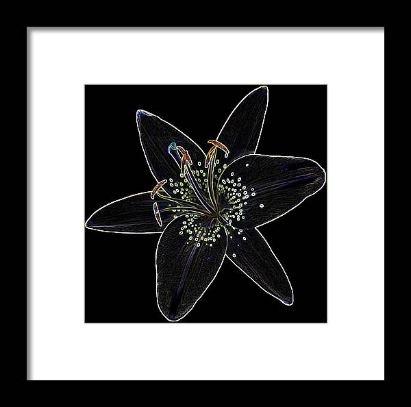 Scanography Framed Print featuring the digital art Black Velvet Lily by Deborah J Humphries