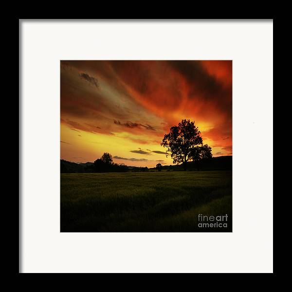 Sunset Framed Print featuring the photograph Blazing Skies by Angel Tarantella