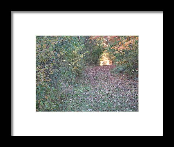 Nature Framed Print featuring the photograph Blazing Trail by Ralph Baginski
