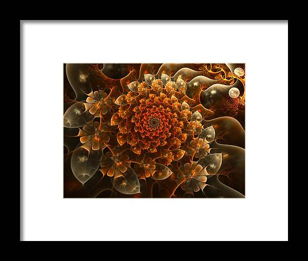 Fractal Framed Print featuring the digital art Bloom Of Beauty by Amorina Ashton