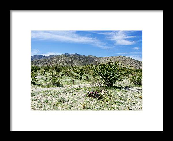 Wildflowers Framed Print featuring the photograph Bloomin Cactii by Jerry Sellers