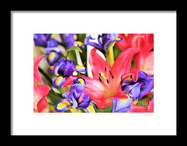Landscape.hill Country.flowers.colors.prints Framed Print featuring the photograph Blooming Colors by Jeff Downs