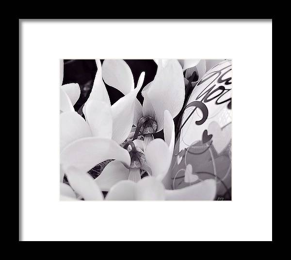 White Flowers Framed Print featuring the photograph Blossoming Love by Peg Donnellan