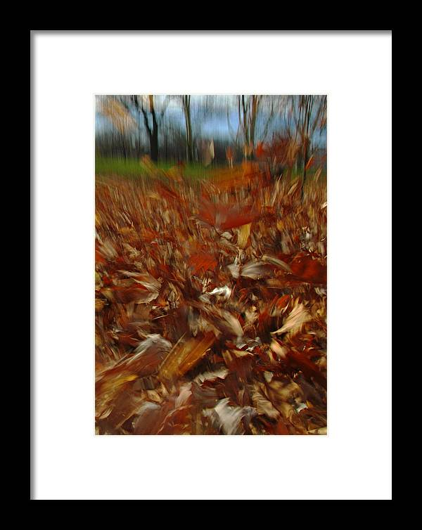 Wind Framed Print featuring the photograph Blowing In The Wind by Juergen Roth