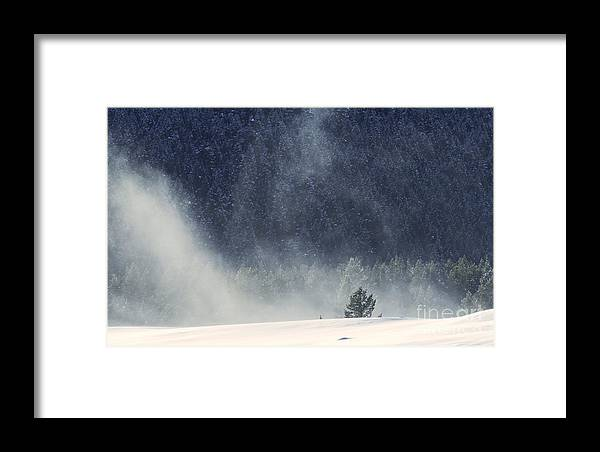 Winter Framed Print featuring the photograph Blowing Snow by Carolyn Fox