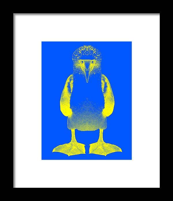 Digital Design Framed Print featuring the digital art Blue Booby by Daniel House