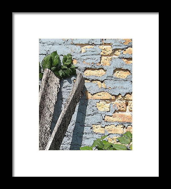 Brick Framed Print featuring the photograph Blue Brick by Gary Everson