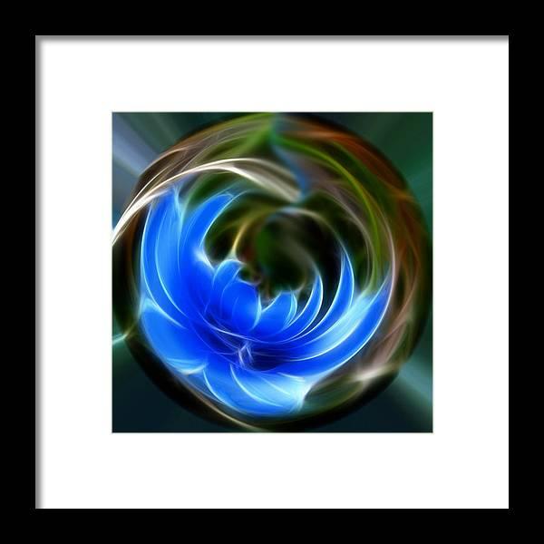 Print Framed Print featuring the photograph Blue Circle Of Life by Eli Marinova