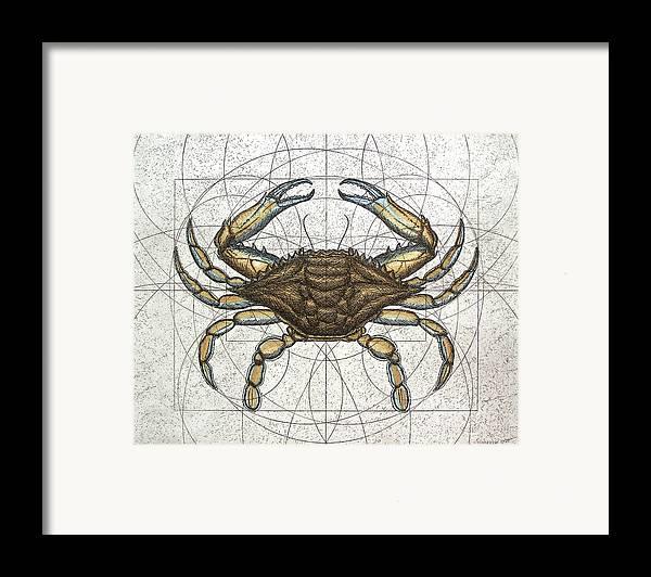 Maryland Framed Print featuring the painting Blue Crab by Charles Harden