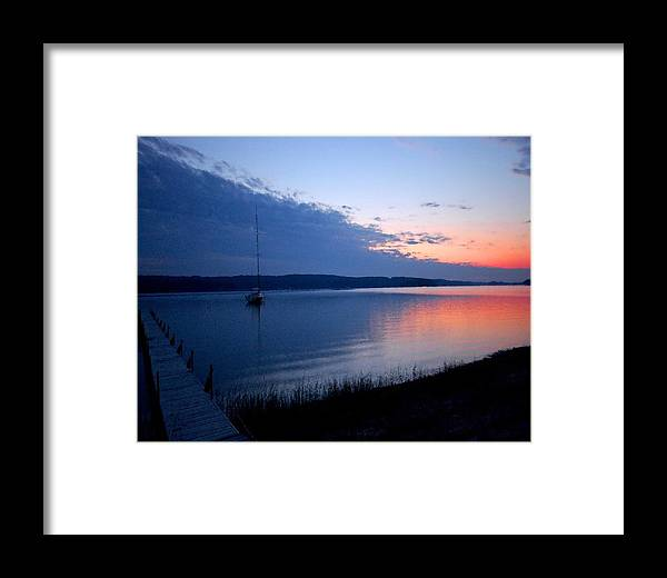 Pelican Framed Print featuring the photograph Blue Downtime by Michael Thomas