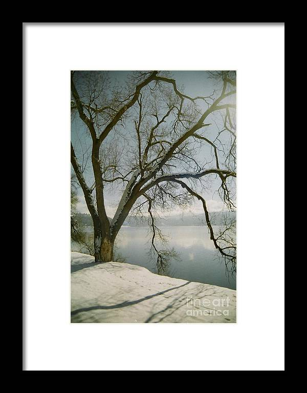 Blue Framed Print featuring the photograph Blue Dream by Idaho Scenic Images Linda Lantzy