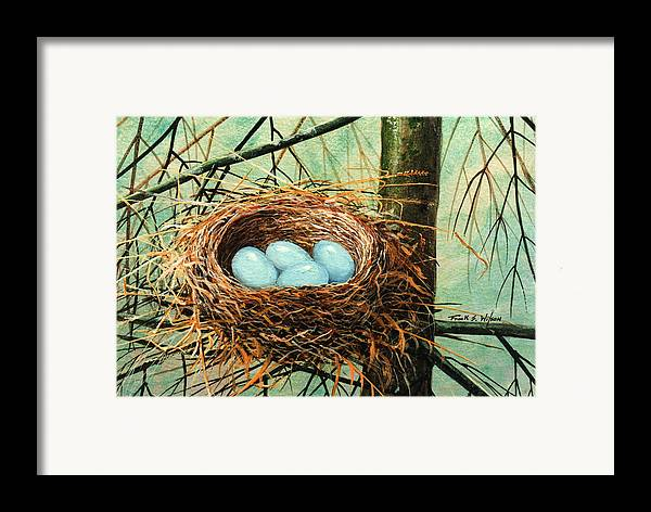Wildlife Framed Print featuring the painting Blue Eggs In Nest by Frank Wilson