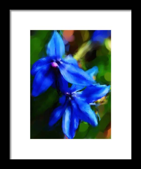 Digital Photograph Framed Print featuring the photograph Blue Flower 10-30-09 by David Lane