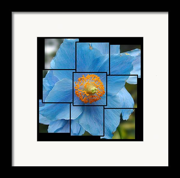 Blue Framed Print featuring the sculpture Blue Flower Photo Sculpture Butchart Gardens Victoria Bc Canada by Michael Bessler