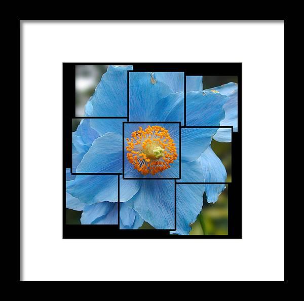 Blue Framed Print featuring the sculpture Blue Flower Photo Sculpture Butchart Gardens Victoria Bc Canada by Michael Bessler
