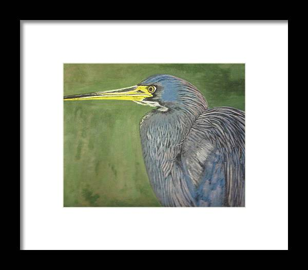 Blue Framed Print featuring the painting Blue Heron by Will Stevenson