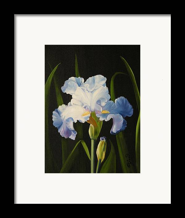 Flower Framed Print featuring the painting Blue Iris by Joni McPherson